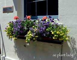 how to build a window flower box window box planters of charleston sc birds and blooms