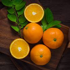 chinotto sour orange tree for sale fast growing trees
