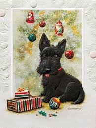 scottish terrier boxed cards health