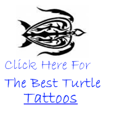 small turtle tattoos tattoo collections