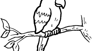 parrot coloring pages awesome macaw coloring page 18 pictures gekimoe u2022 118189