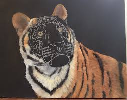 how to paint a tiger wildlife art by laura curtin