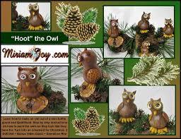 step class dvd hoot the owl class dvd miriam