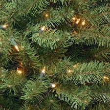 amazon com national tree 7 5 foot north valley spruce tree with
