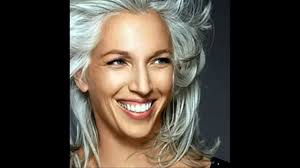 silver highlights for brown hair silver hair dyecolor for black