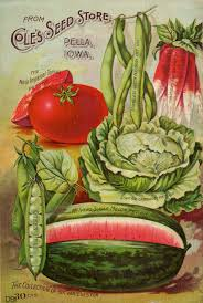 seed catalogs from smithsonian institution libraries vintage