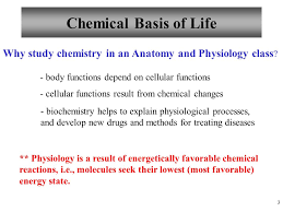 Anatomy And Physiology Class Chapter 2 Chemistry Comes Alive Lectures 2 3 And 4 Ppt Download