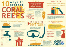What Are Good Words To Describe Yourself What Can I Do To Protect Coral Reefs