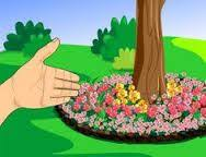 star shaped flower garden around the tree inspires me to think