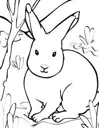 coloring pages rabbit printable rabbit craft activity printable