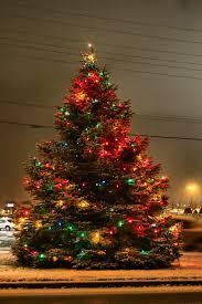 christmas tree and snow christmas lights decoration