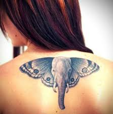 25 elephant tattoos on back