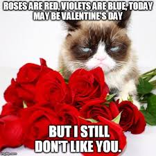 Cute Valentines Memes - cute valentine day memes grumpy cat compilation valentines day