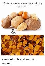 Autumn Memes - so what are your intentions with my daughter assorted nuts and