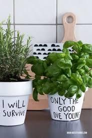 herbs planter i will survive diy herbs planter diy blumen u0026 pflanzen