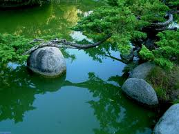 Japanese Rock Gardens Pictures by Charm Beroiata Serenity And Japanese Rock Garden To Gray Kindle