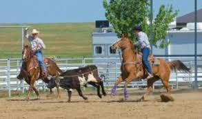 Jake Barnes Team Roping The Benefits Of Roping Both Ends Expert Advice On Horse Care And