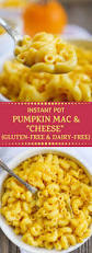 instant pot vegan pumpkin mac and cheese gluten free and dairy