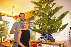 christmas tree apartment christmas lights decoration