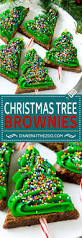 christmas tree brownies dinner at the zoo