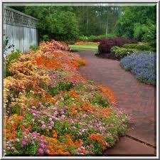 photo 1112 11 flower beds in mercer arboretum and botanical