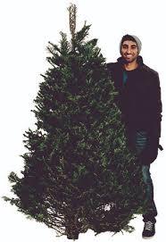 christmas tree recycling program u2022 acadia ca