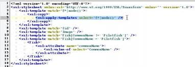 xslt tutorial tweaking xml with identity transforms online