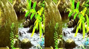 hawaiis nature in 3d yt3d youtube haammss