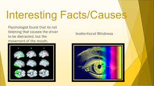 Inattentional Blindness Definition Distracted Driving By Jeffrey Gilbert What Is Distracted Driving