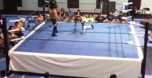 backyard wrestling ring for sale cheap pro wrestling ring