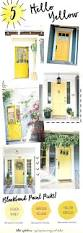 amusing yellow front door meaning photos best inspiration home