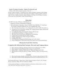technical resume writing services resume writing professional services resume template