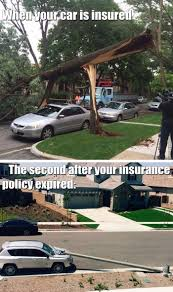 Claims Adjuster Meme - insurance memes best collection of funny insurance pictures