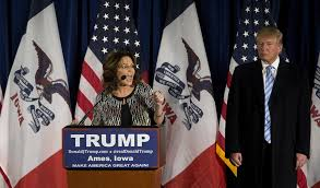 Sarah Palin Memes - sarah palin memes turtleboy