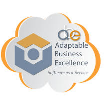 adaptable business excellence saas