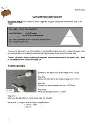 calculating magnification by lpratt teaching resources tes