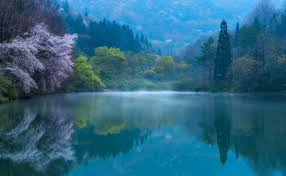 blue reflections wallpapers nature photography landscape lake forest spring morning