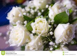 White Rose Bouquet Bouquet Of White Rose Flowers Royalty Free Stock Photos Image