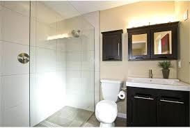bathroom design denver simple kitchen detail