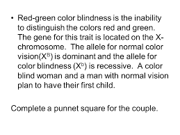 Chromosome Color Blindness 14 1 Human Chromosomes What Makes Us Human What Makes Us