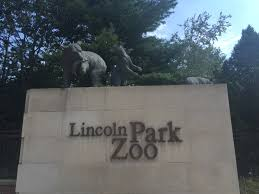 Chicago Lincoln Park Zoo Lights by Lincoln Park Zoo U2013 Mag Mile Runner