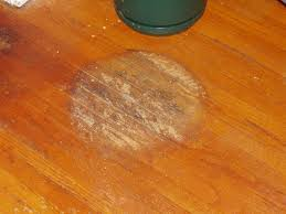 can i use pine sol to clean wood cabinets wood floor maintenance wood expert tips mn