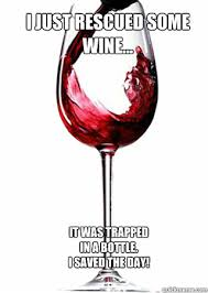Red Wine Meme - perfect i love it wine time pinterest wine funny memes