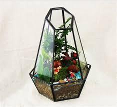 aliexpress com buy quartz shape geometric terrarium glass