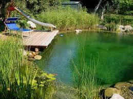 Backyard Swimming Ponds - schwimmteich rund garten pinterest natural swimming ponds