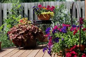 decoration in flower planter ideas for patio patio container