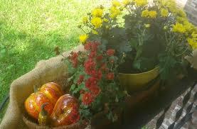 Monogram Garden Flag Cosmic Designs Fall Harvest Decor On A Budget Part 3 Garden