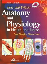 Human Physiology And Anatomy Pdf 22 Best Medical Books Free Download Images On Pinterest Medical