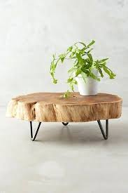 Wood Slice Coffee Table Wood Slice Coffee Table Tree Slab Coffee Table For Sale Rankhero Co