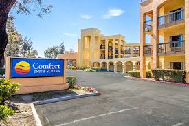 Comfort Inn Story City Comfort Inn And Suites San Francisco Airport North 2017 Room